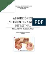 Monografia de Los Mecanismos Moleculares de La Absorción Intestinal de Nutrientes