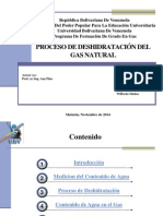Deshidratacion Del Gas Natural (1)