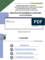 Deshidratacion Del Gas Natural (1)