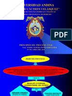 PRINCIPIOS de Derecho Procesal Civil UANCV