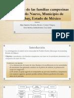 Estrategias de Las Familias Campesinas en Pueblo Nuevo