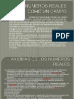 Los Numeros Reales--jorge Arias (2)