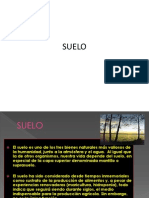 SUELO.pptx