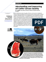 Calitatea Carcaselor de bovine