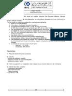 Analyse Fin TP6 BFina et ratios.pdf