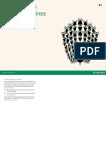 Pearson Brand Guideline
