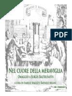 Ducci, Trasformazione Del Gotico (Nel 1960)