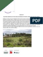 Anexo XIII Relatorio Arboreo Futura Area Moradia Estudantil Campus Sjc1