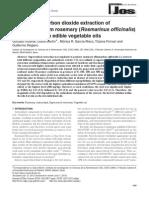 supercritical_pdf.pdf