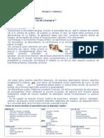 0_observa_ce_se_intampla.doc