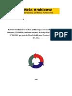 Relatório Gmp Conama 2009.