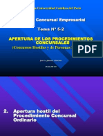 PUCP Concursal Clase6 2011