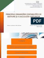 principiile organizarii contabilitatii de gestiune