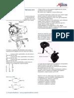 Biologia Exercicios Fisiologia Animal Sistema Nervoso Gabarito Resolucao