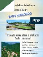 Baile Homorod
