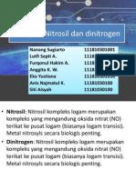 Tugas Komplek Nitrosil Dan Dinitrogen
