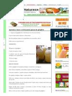 Aprenda a Fazer a Refrescante Gasosa de Gengibre _ Cura Pela Natureza.com