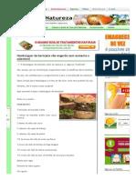 Hambúrguer de Berinjela Não Engorda Nem Aumenta o Colesterol _ Cura Pela Natureza.com