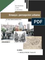 Percepcion Urbana ensayo