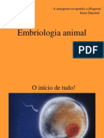 Embriologia animal.ppt