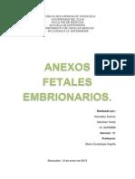 Anexos Fetales Embrionarios Trabajo