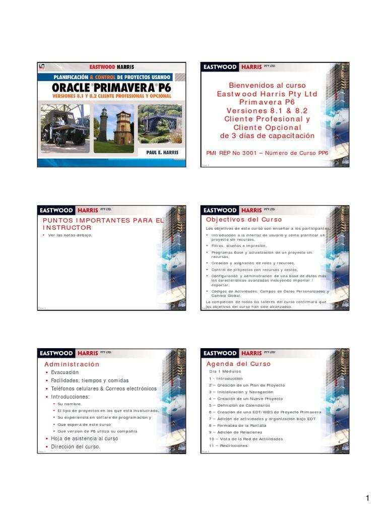 Primavera P6 (Planificación & Control de Proyectos)