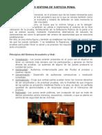 sistema de justicia penal.doc