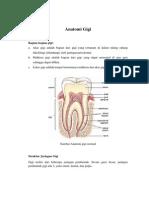 Anatomi Gigi