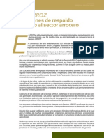 REVISTA DE ARROZ.pdf