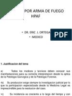 ARMAS DE FUEGO 2009.ppt