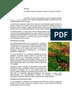 Causas y Tipos de Inundaciones Exposicion
