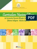 CNB  ebi.pdf