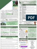 BOLETIM DOMINICAL DE 17-01-10