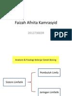 Anatomi&Fisio Faizah