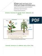 Bragrisc - Plant Morphology and Physiology