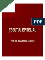 Curs 1 Tesutul Epitelial Ppt