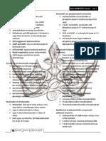 trans of Harper's illustrated Biochemistry Ch 32