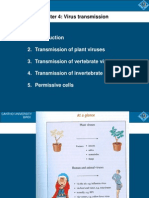 Virus Transmission (C4)