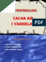 Cacar Air Ppt