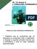 NR -15 Anexo 6 Ismael Pires (1)