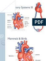 13 Circulatory Systems III PPT