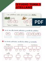 ficha-estudio-tema-5-1r-cast.pdf