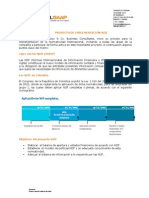 Implementacioìn NIIF (IFRS)