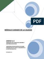 Anexo 6.5 Rol de Asesores y Auditores