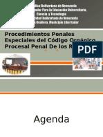 Los Procedimientos Penales Especiales Del Código Orgánico Procesal