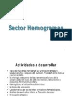 Sector Hemogramas [Modo de Compastibilidad]