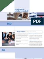 BoD Brochure Editeurs