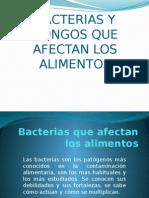 Bacterias y Hongos Que Afectan Los Alimentos