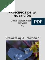 Principios_de_nutricion_.pptx