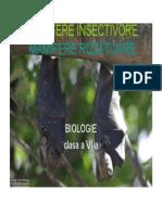 Mamifere Insectivore Rozatoare
